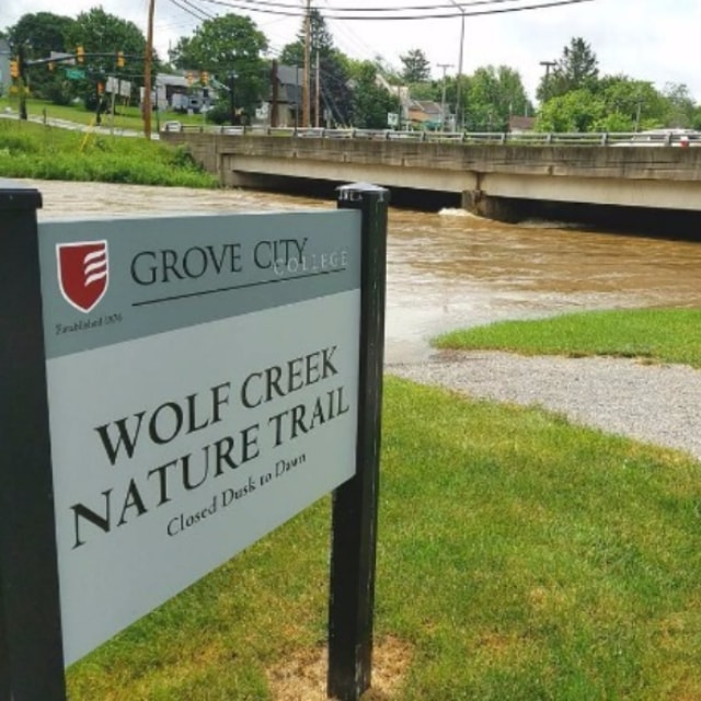 After heavy weekend rain, you'll need waders to hike the Lower Campus trail along Wolf Creek.